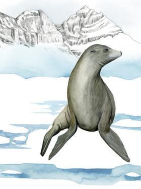 Arctic Animal IV