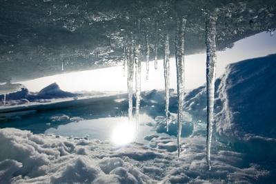 https://imgc.allpostersimages.com/img/posters/arctic-ice-svalbard_u-L-PZMQUT0.jpg?p=0