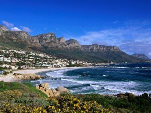 Beach at Camps Bay, Cape Town, South Africa by Ariadne Van Zandbergen