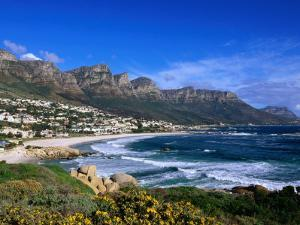 Beach at Camps Bay, Cape Town, South Africa by Ariadne Van Zandbergen
