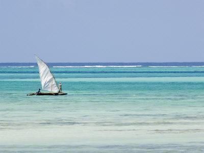 Dhow, Traditional Boat, Zanzibar Town, Zanzibar West, Tanzania