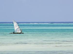 Dhow, Traditional Boat, Zanzibar Town, Zanzibar West, Tanzania by Ariadne Van Zandbergen