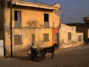 Horse and Cart Passing House, St. Louis, Senegal by Ariadne Van Zandbergen