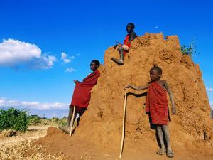 Three Young Maasai Goat Herds on a Termite Mound, Longido, Arusha, Tanzania by Ariadne Van Zandbergen