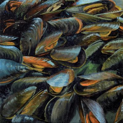 Mussels, 2014