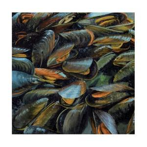 Mussels, 2014 by Aris Kalaizis