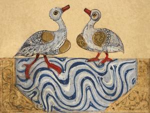 Goose and Duck by Aristotle ibn Bakhtishu