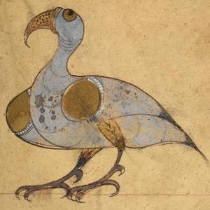 Swan-Phoenix by Aristotle ibn Bakhtishu