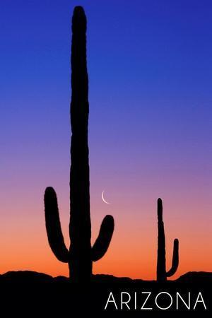https://imgc.allpostersimages.com/img/posters/arizona-cactus-and-moon_u-L-Q1GQOLG0.jpg?p=0