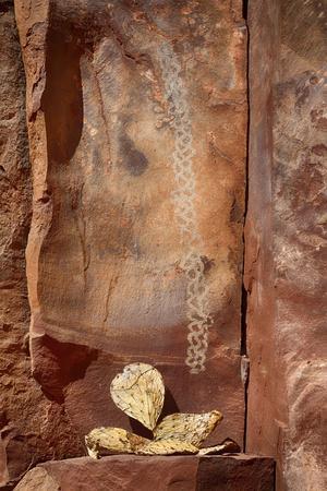 https://imgc.allpostersimages.com/img/posters/arizona-coconino-national-forest-palatki-heritage-site-pictographs-at-roasting-pit-site_u-L-Q1D0C6F0.jpg?p=0