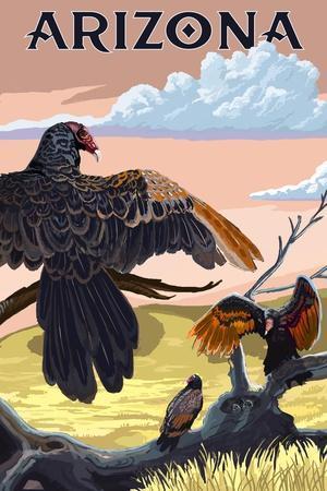https://imgc.allpostersimages.com/img/posters/arizona-vultures_u-L-Q1GQGTF0.jpg?p=0