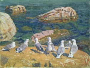 Seagulls, 1910 by Arkadij Aleksandrovic Rylov