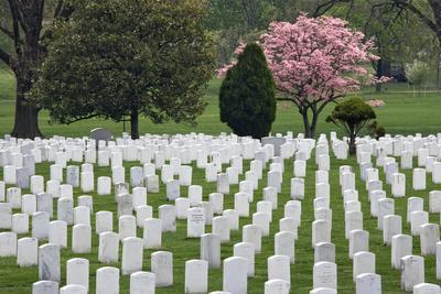 https://imgc.allpostersimages.com/img/posters/arlington-national-cemetery-headstones-arlington-virginia-usa_u-L-PN6YKR0.jpg?p=0
