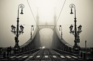 The Bridge by Armin Marten