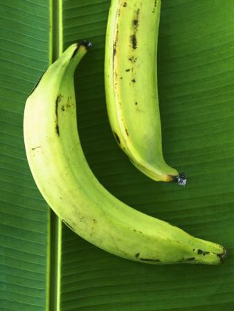 Two Plantains on a Banana Leaf by Armin Zogbaum