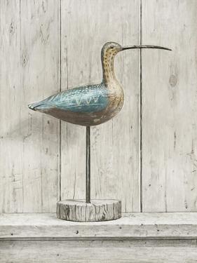 Curlew by Arnie Fisk