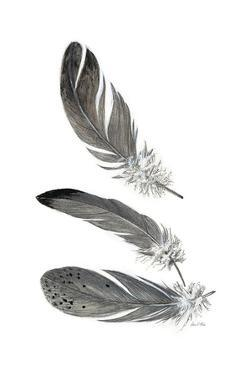 Feather Study 3 by Arnie Fisk
