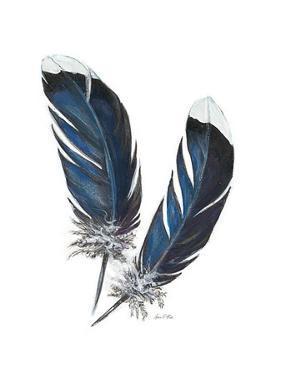 Feather Study 4 by Arnie Fisk