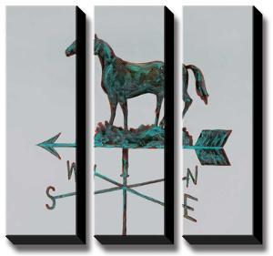 Rural Relic Horse by Arnie Fisk