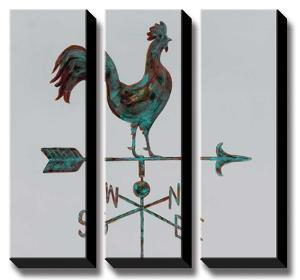 Rural Relic Rooster by Arnie Fisk