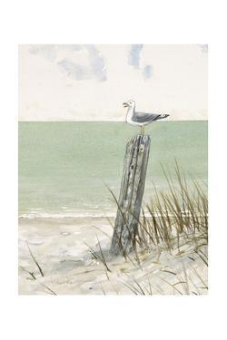 Seaside Perch by Arnie Fisk