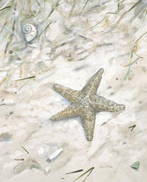 Seaside Starfish by Arnie Fisk
