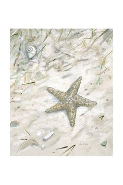 Seaside Starfish by Arnie Fisk