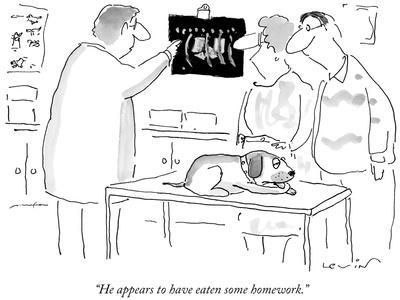 """""""He appears to have eaten some homework."""" - New Yorker Cartoon"""