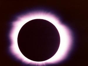 Eclipse by Arnie Rosner