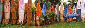 Arranged Surfboards, Maui, Hawaii, USA