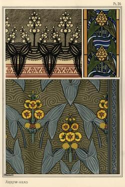 Arrowhead, Sagittaria sagittifolia,stained glass and fabric patterns. Lithograph by Verneuil.