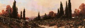 Autumn Vineyard #1 by Art Fronckowiak