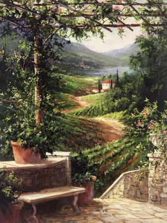 Chianti Vineyard by Art Fronckowiak