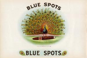 Blue Spots by Art Of The Cigar