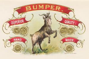 Bumper by Art Of The Cigar