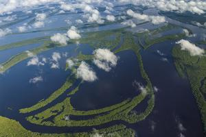Aerial of Amazon River Basin, Manaus, Brazil by Art Wolfe