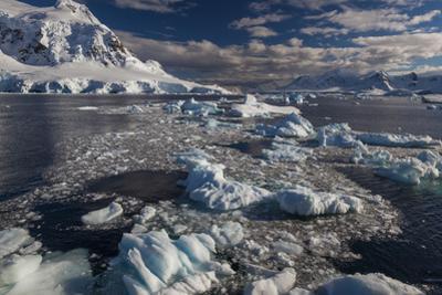 Antarctic Peninsula, Antarctica by Art Wolfe