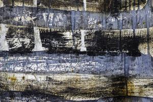 Cuba by Art Wolfe