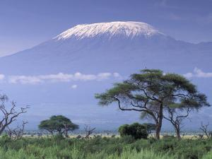 Mount Kilimanjaro, Amboseli National Park, Kenya by Art Wolfe