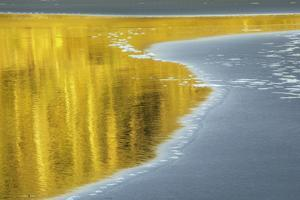 Olympic Washington by Art Wolfe