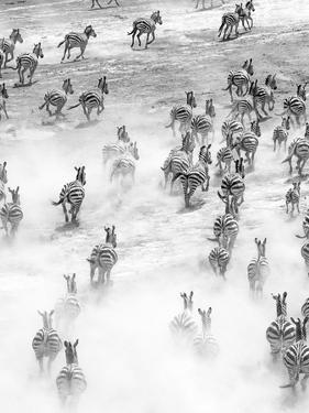 On the Run in Tanzania by Art Wolfe