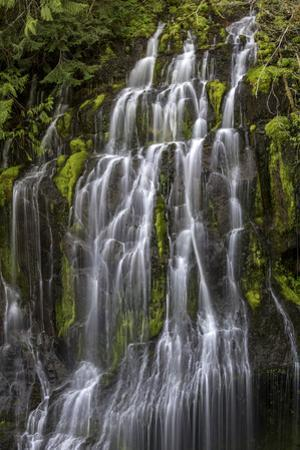Panther Creek Falls by Art Wolfe