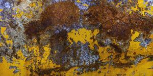Rust Abstract by Art Wolfe