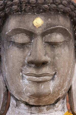 Statue face at the Ayutthaya Historical Park, Thailand by Art Wolfe