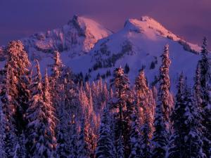 Unicorn Peak, Mt. Rainier National Park, Washington, USA by Art Wolfe