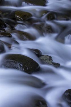 Washington_Rainier Waterfall II by Art Wolfe
