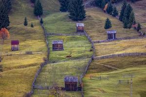 Pastures, Bucovina, Romania by Art Wolfe Wolfe