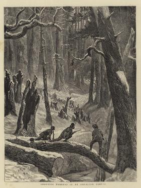 Shooting Turkeys in an American Forest by Arthur Boyd Houghton