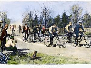 Bicycle Race, 1896 by Arthur Burdett Frost