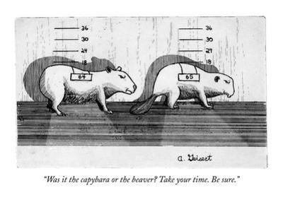 """Was it the capybara or the beaver? Take your time. Be sure."" - New Yorker Cartoon"